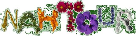 Logo von Nahtour Michaela Schlosser, Naturerlebnis für Kinder und Erwachsene